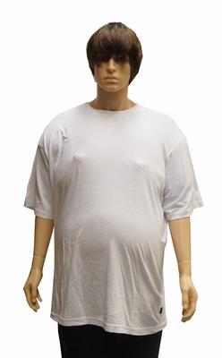 """Kamro T-shirt met korte mouwen  """" Extra lang """"  Wit"""